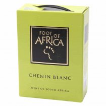 1 X SPECIALS Foot of Africa Chenin Blanc 3l BiB
